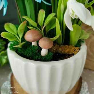 Мастер-класс Лепим грибы из полимерной глиы